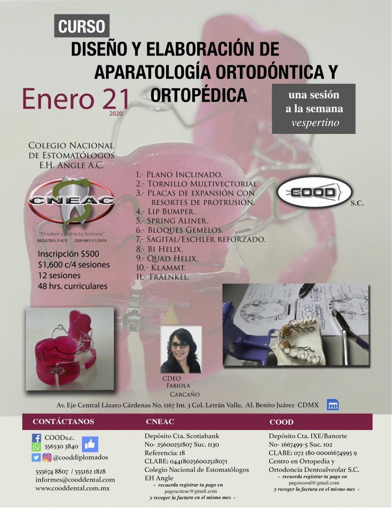 ENERO 21 (1)